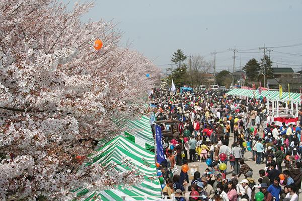 元荒川の桜とさくらまつり(4月)