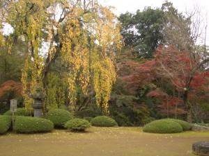 2011年11月18日(金)小江戸川越ツアー